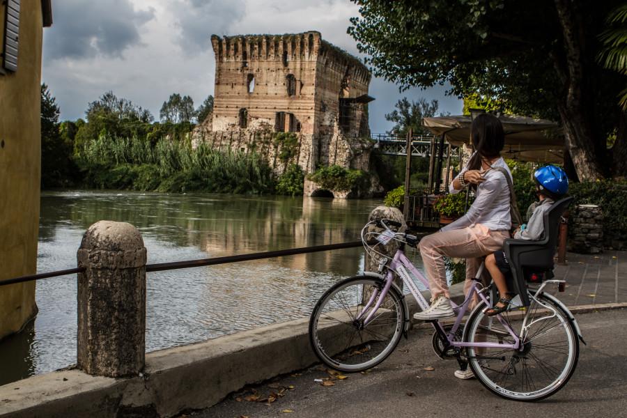 Bicicletta andando nella natura